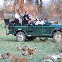 Game drive in Lower Zambezi, Zambia