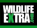 WildlifeExtra