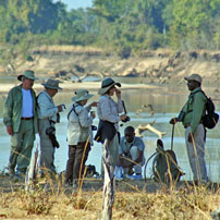 Zam-Luangwa-walk-coffee-202