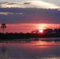 okavango-sunset-square