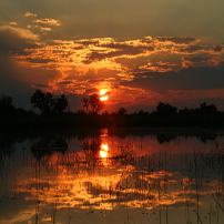 RS Bots Okavango-sunset202
