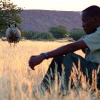 Rhino-tracking202