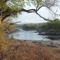 Michele-Malawi-mkulu