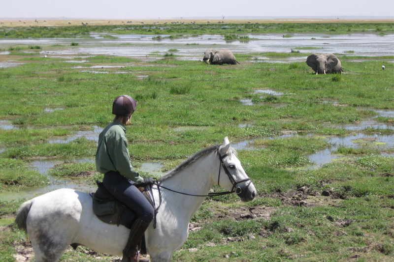 jane experiences one of kenyas top riding safaris in amboseli