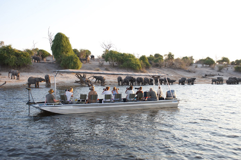 safari-activities-Chobe-PHOTO-boat-1