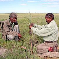 Bushman walk, Botswana