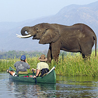 Canoeing safari, Lower Zambezi, Zambia