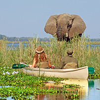 Lower Zambezi, Zambia