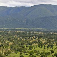 Semliki Valley, Uganda