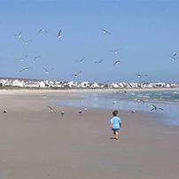 West Coast beach, South Africa
