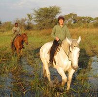 New sounds, stormy skies. Jane in Botswana in the Emerald season - November 2011
