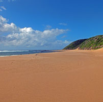 Maputoland-beach-202