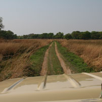 Bill-road-to-Bangweulu