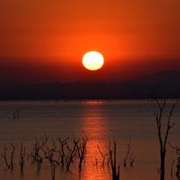 Michele-Zim-sunset