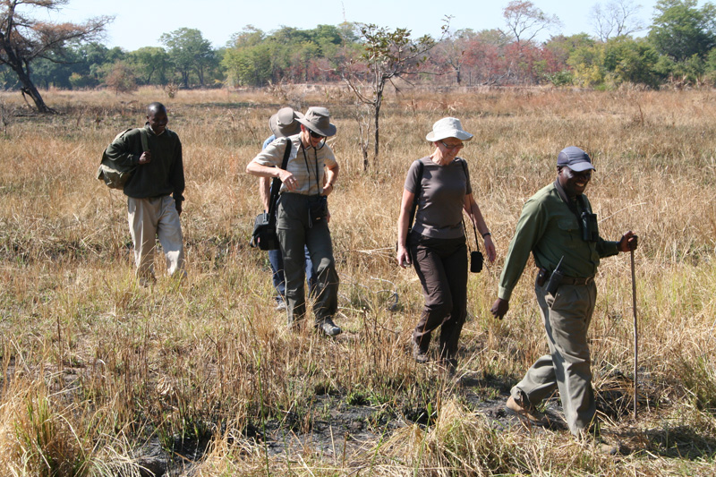 south-luangwa-walking-safaris
