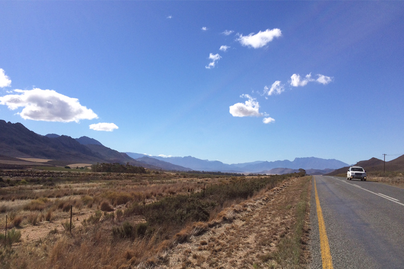 julia visits south africas garden route and eastern cape game reserves