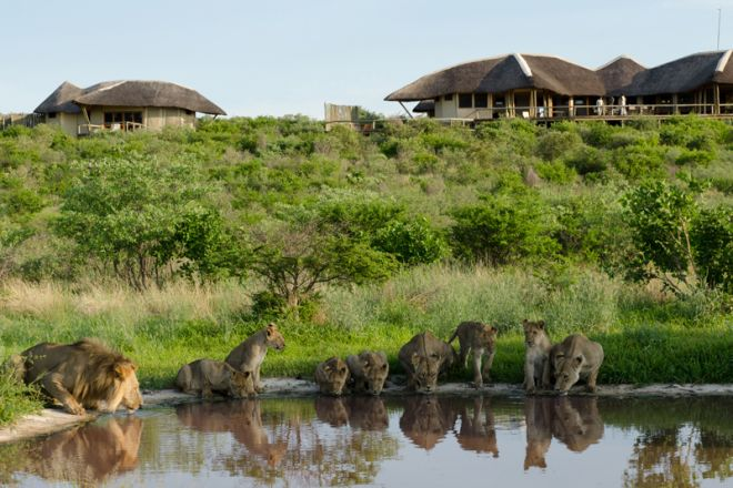 Tau Pan Camp, Botswana - Waterhole