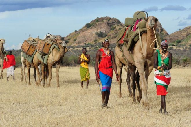 Karisia Walking Safaris Masai Camels
