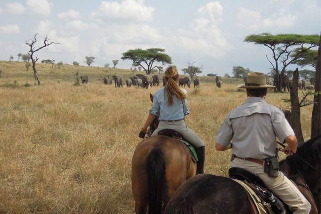 Ol Donyo Lodge Horse Riding Elephant