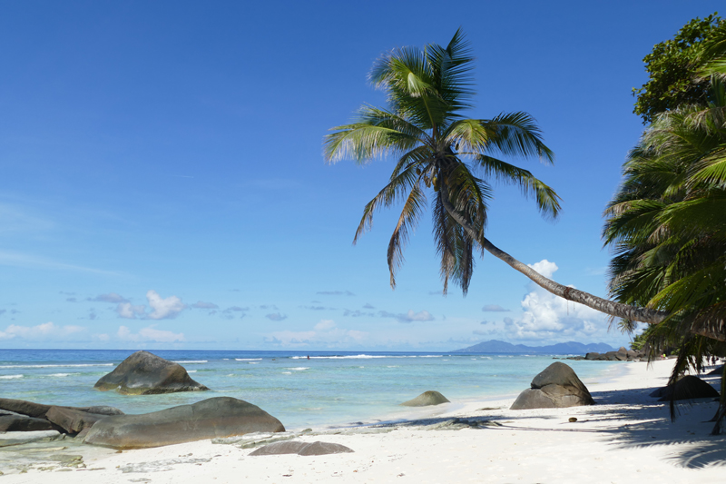 All About Safaris seychelles