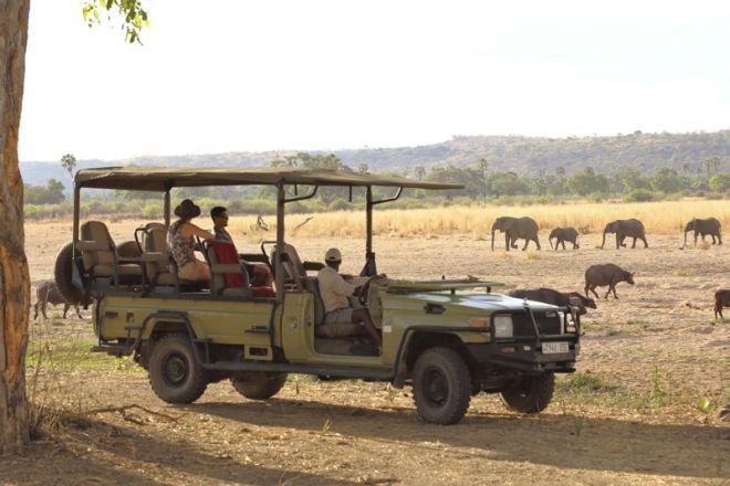 Jabali Ridge game drive elephant buffalo