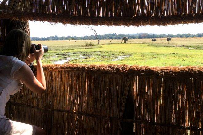 Kafunta River Lodge Photographic Hide View