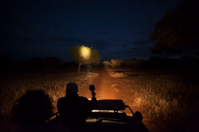 Kuro Tarangire night game drive