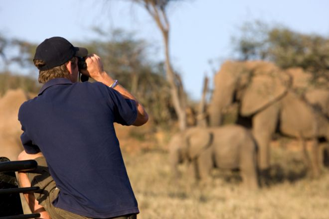 Ol Malo Lodge Photographer Elephant