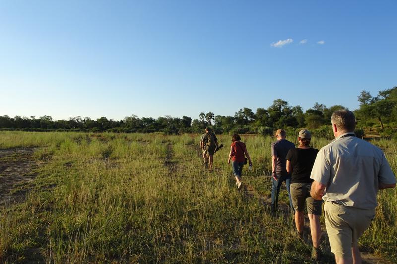 south africa walking pafuri camp