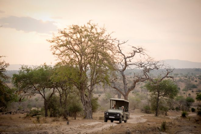 Sand Rivers Selous game drive