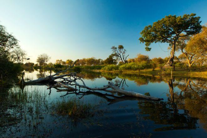 Selinda Explorers Camp Landscape