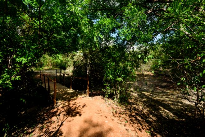 Selous Impala Camp grounds