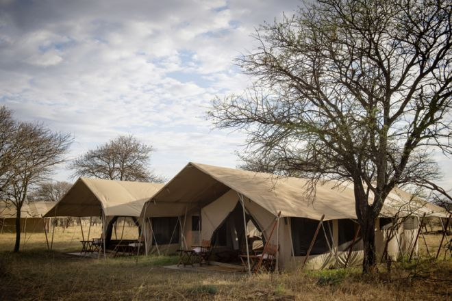 Serengeti Safari Camp family tent exterior