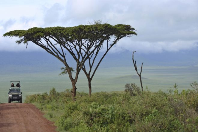 The Highlands Ngorongoro descent road