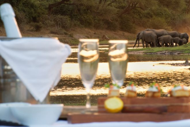 Time + Tide Chongwe House Sundowner Elephant