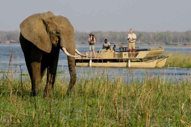 Chiawa Camp Fishing Elephant