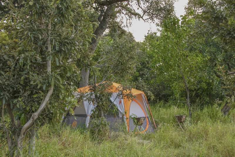 David Foot Walking Safaris Tent Exterior