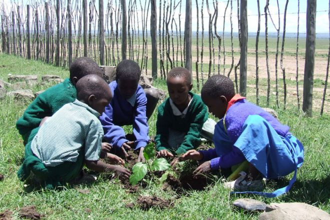 Kicheche Community Tree Planting