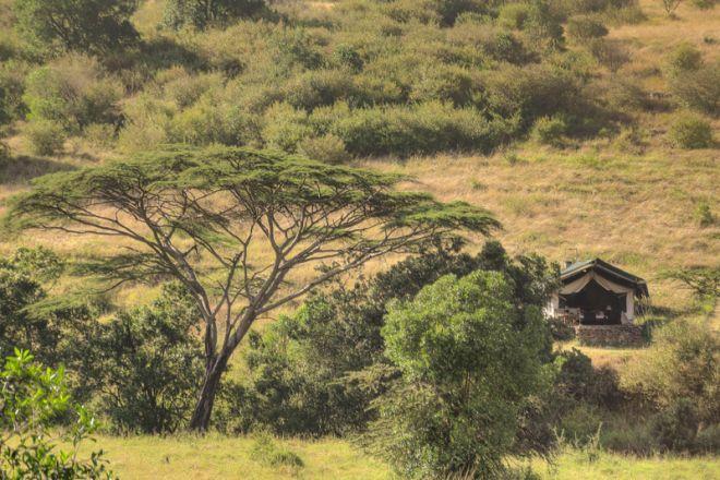 Kicheche Mara Camp Tent Setting