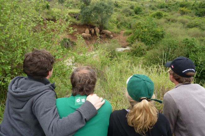 Laikipia Wilderness Camp Elephant Viewing on Foot