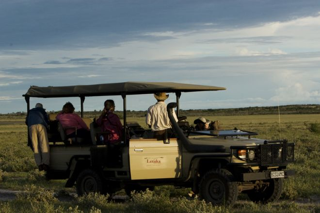 Letaka Private Mobile Safaris Game Drive