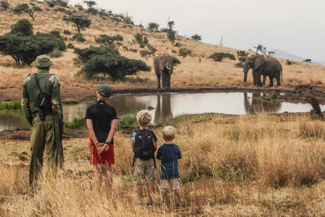 lewa-house-family-walk-elephant-c-ls