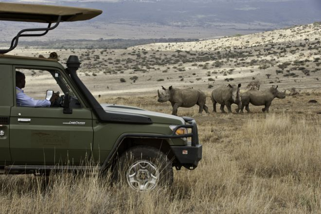 lewa-house-game-drive-rhino-c-lh