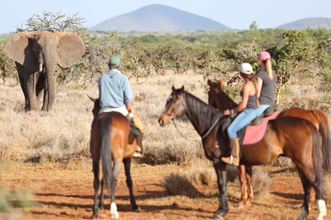 Lewa Wilderness Camp Horse Riding with Elephant