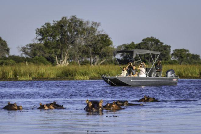 Little Vumbura Boating Hippo