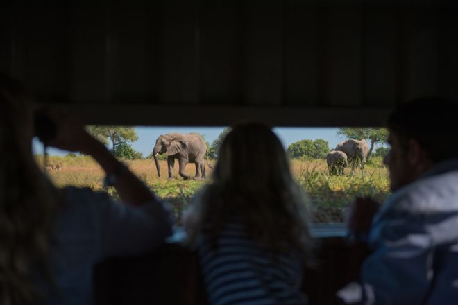 Luangwa Safari House Hide