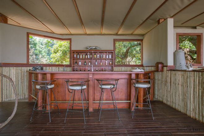 Sausage Tree Camp Front of House Bar