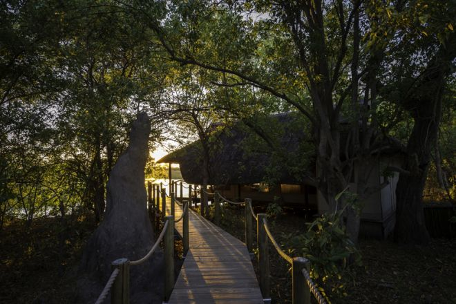 Savuti Camp Room Exterior Walkway