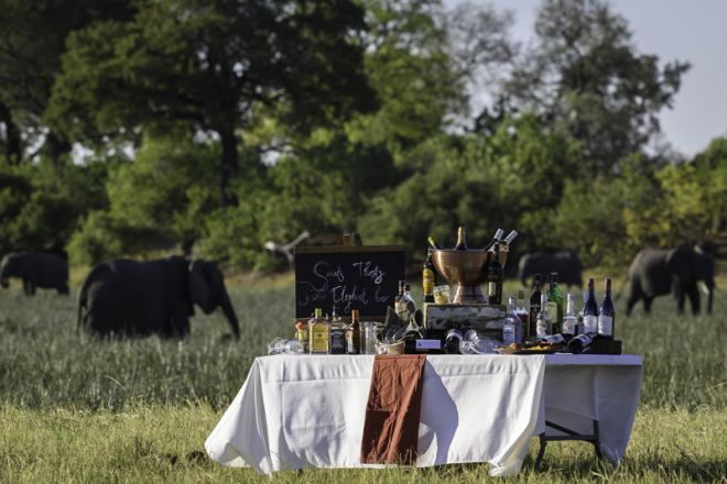 Savuti Camp Sundowner Elephants