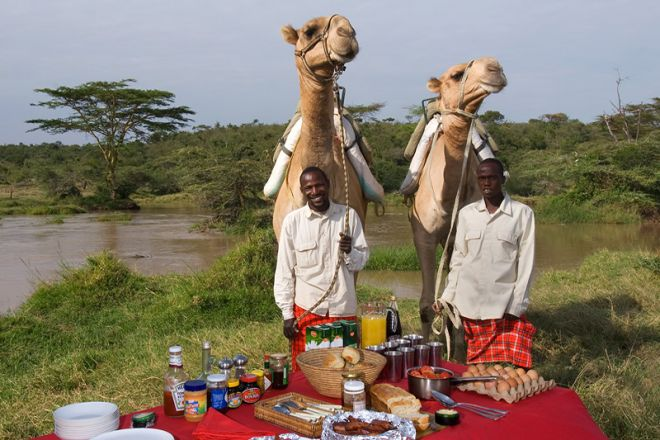 Sosian bush breakfast with camels